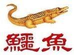 東柏建設(鱷魚必安住網路總經銷)Logo
