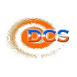 迪西巨網股份有限公司Logo