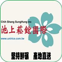 菘鋐國際企業社Logo