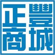 電豐電業有限公司Logo